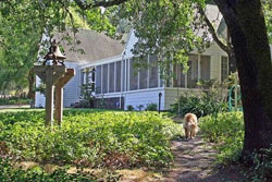 napa valley pet friendly vacation rental home rental